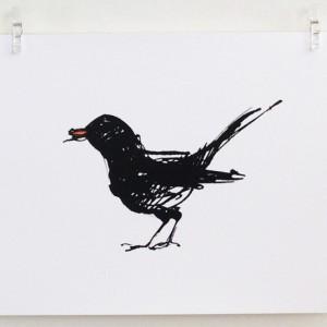 Blackbird standing print