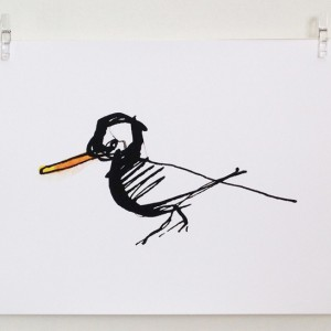Oyster Catcher print